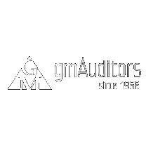 gmAuditors